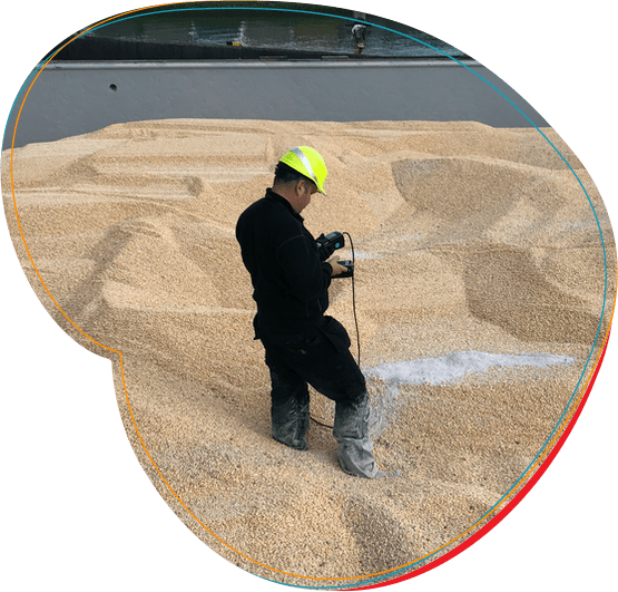 Sandėliuojamų grūdų ir jų produktų apsauga taikant fumigaciją